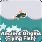 Ancient Origins - Flying Fish